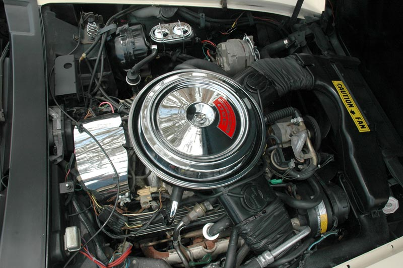 1981 Chevrolet Corvette L81 Engine